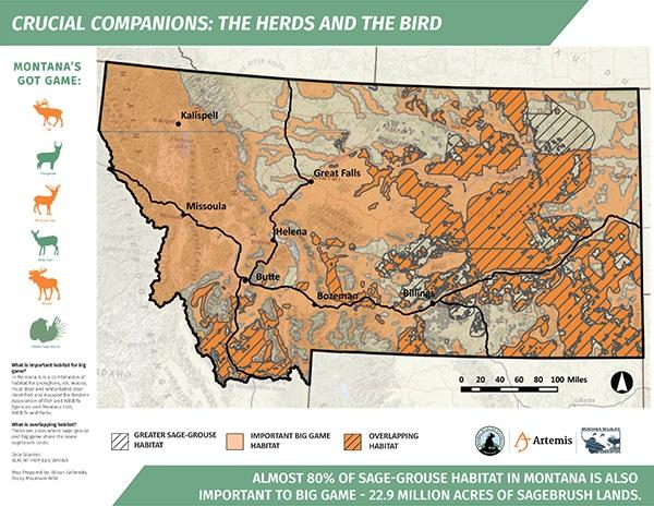 Montana-Sage-Grouse-Map