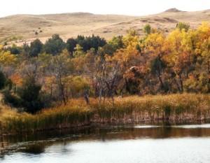 Horse Creek Easement