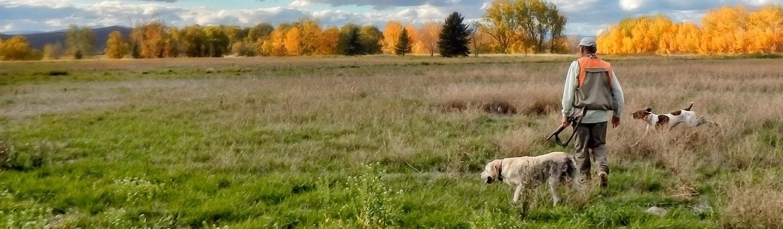 Hank-Hunting-Fall-Colors-3-Steve-Woodruff