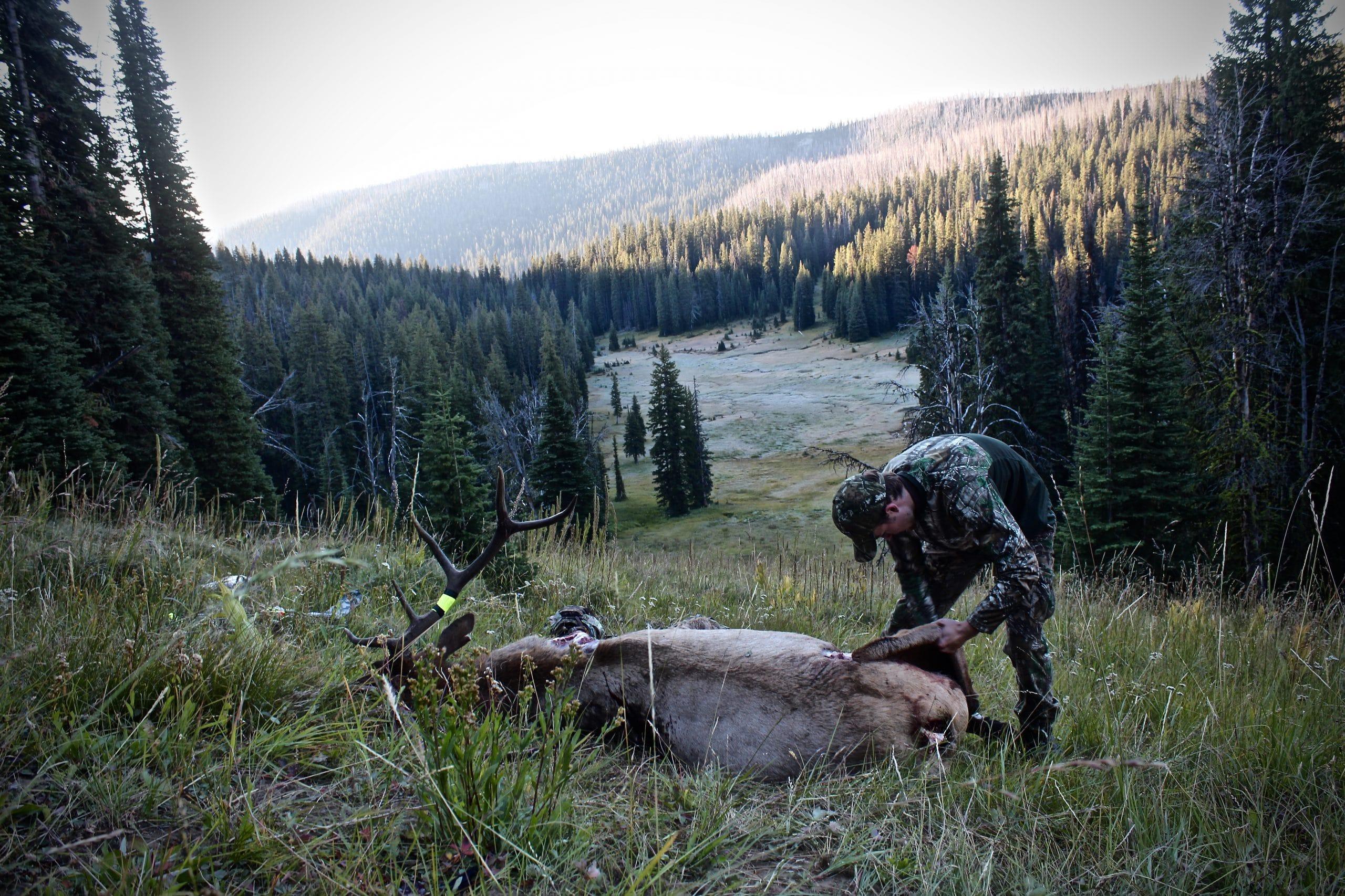 montana u2019s wildlife isn u2019t for sale